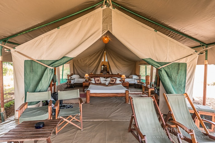 Camping or glamping out in the wilds of africa.