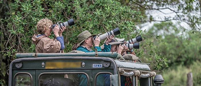 Guests on Richard Costin's safari workshop class photographing Leopard Cubs near the camp.