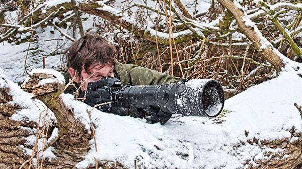 richard costin wildlife photography workshops