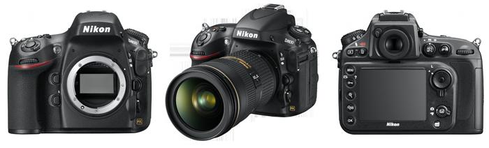 Nikon D800 review - Body - Richard Costin Wildlife Photographer