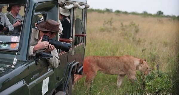 01: Up and running, Africa Live 2014 Big Cats