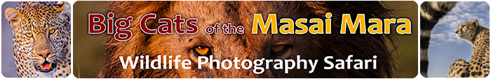 Big Cats Wildlife Photography Workshop, Masai Mara, Africa