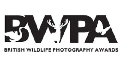 BWPA 2015 Award