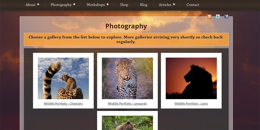 wildlife photography gallery page by Richard Costin