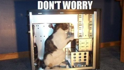 tech support cat meme