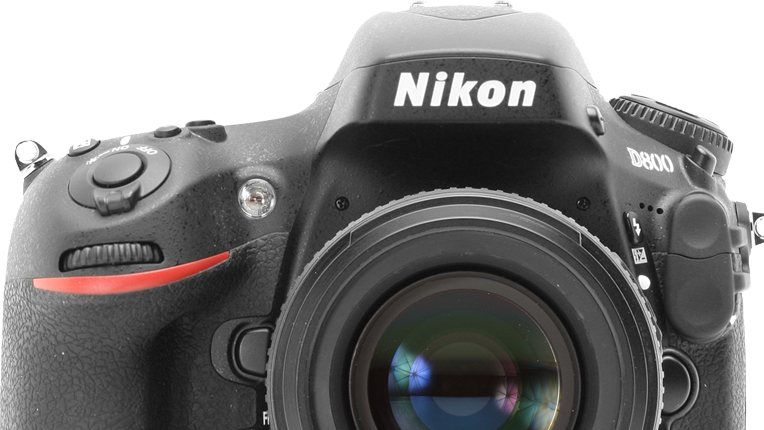 nikon d800 dslr camera review by wildlife photographer richard costin