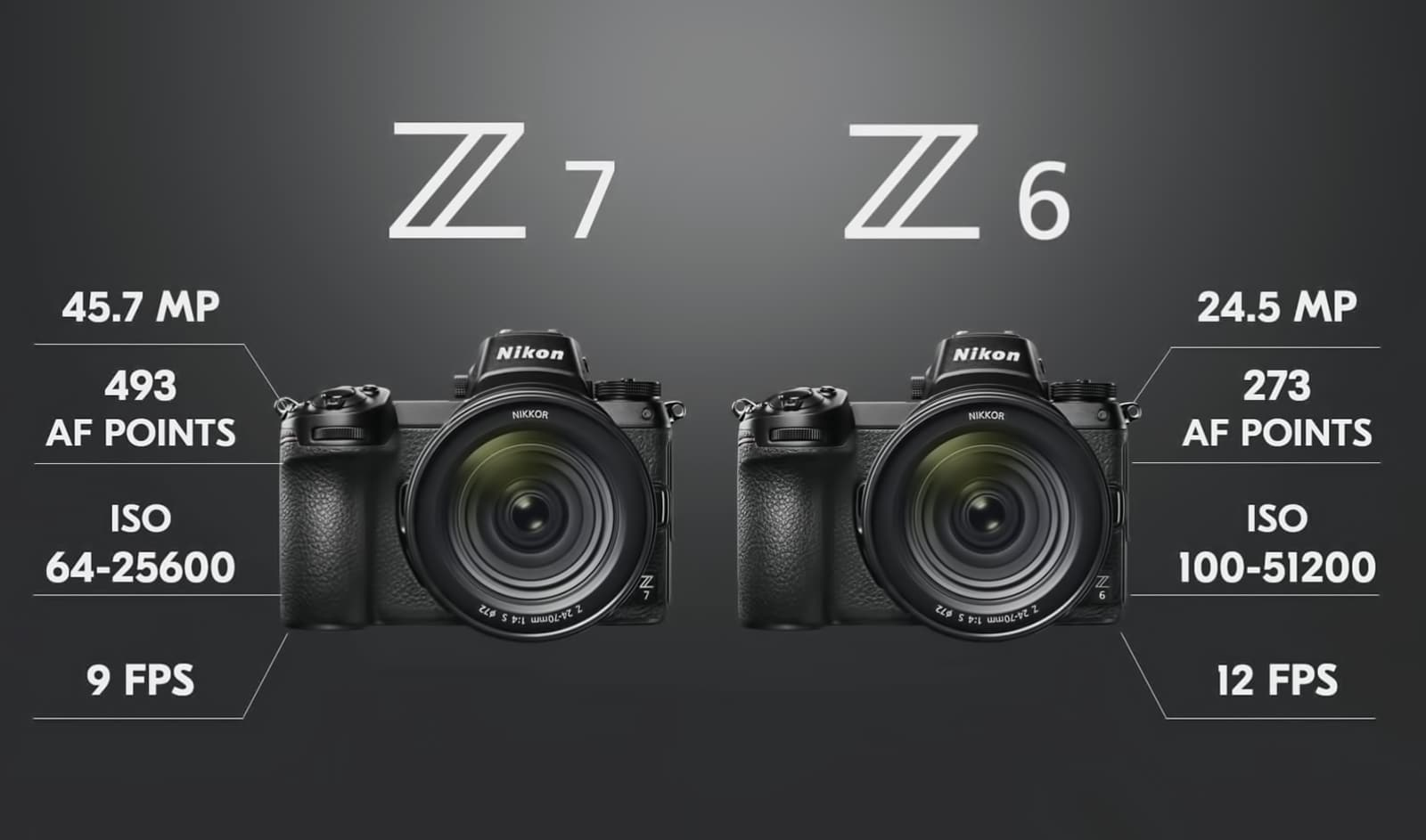 New era for Nikon! Z7 & Z6 Mirrorless cameras  | Wildlife